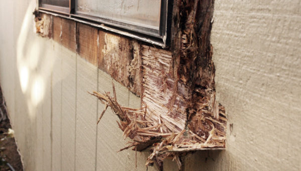 Window Wood Rot Repair Sacramento